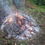 剪定枝の焼却処分には最高の一日でした!