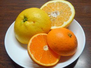 サンフルーツと清見タンゴール