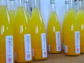 半島オレンジジュース
