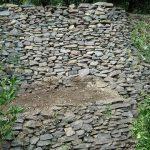 二人のエバさんと共に石垣の修復作業をしました!